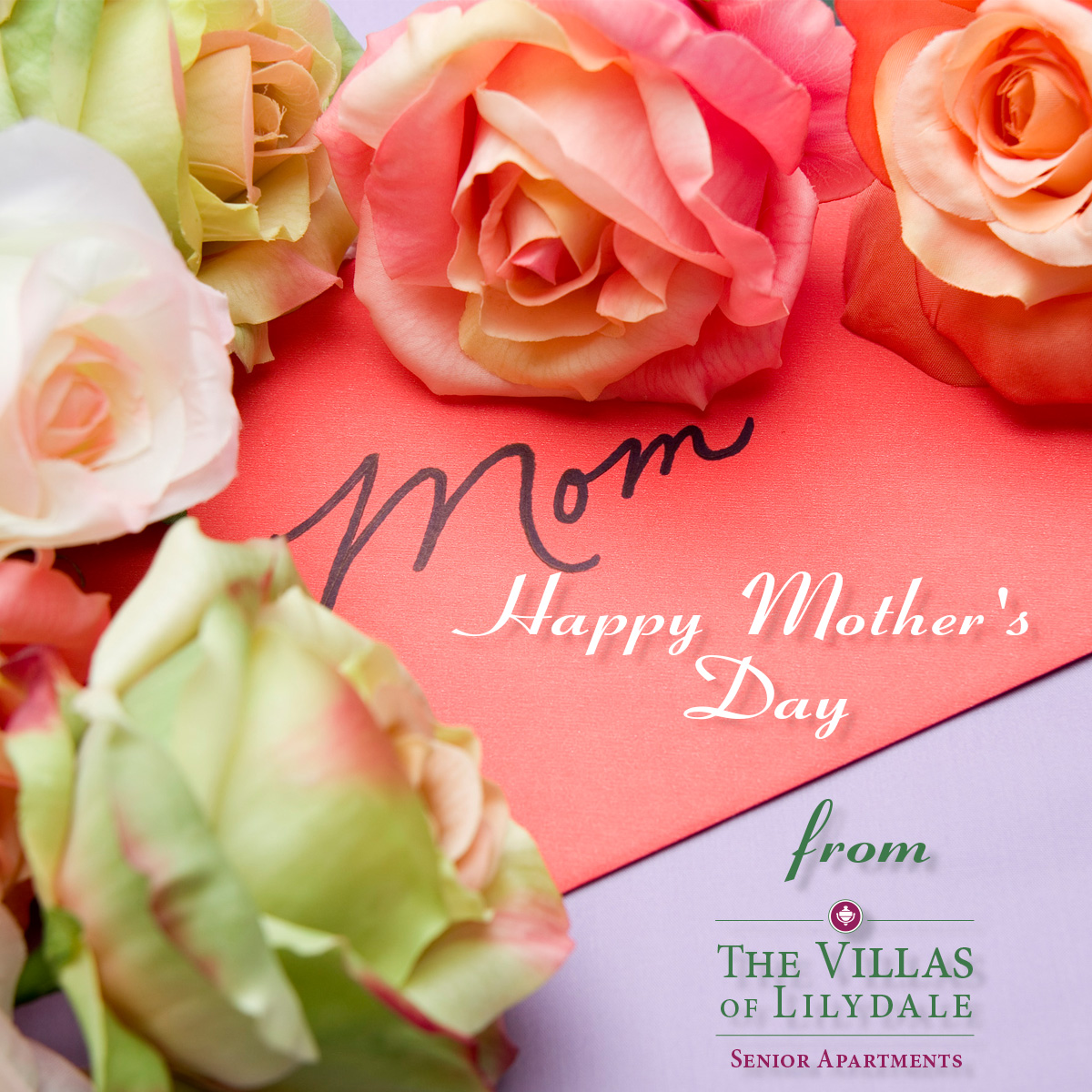 Mother's Day, Villas of Lilydale Senior Living, Lilydale, MN