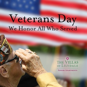 happy veterans day, villas of lilydale senior living, lilydale mn