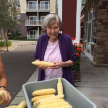 Villas of Lilydale Senior Living-Corn Shucking (1)